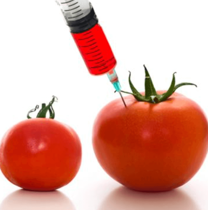 What Is A GMO? What You Need To Know