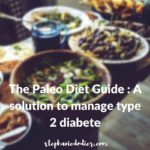 The Paleo Diet Guide : A Solution to Manage Type 2 Diabetes