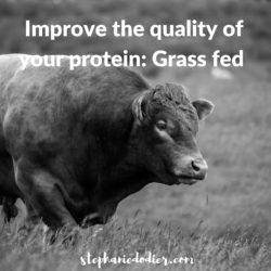 how to improve food quality: protein