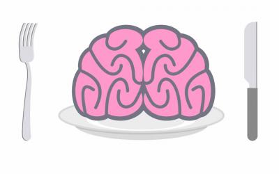 Diet Mindset Professional Training
